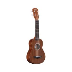 Guitare Folk Togo Voyage massive