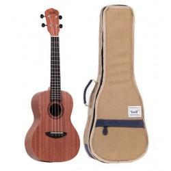 Guitare Folk V5-GACE Electro Naturel Massive